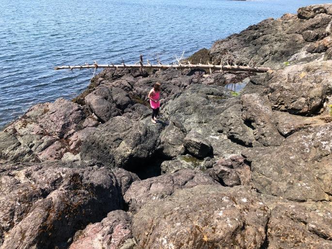 San Juan Island, Roche Harbor, , Washington State, PNW,  Friday Harbor, Haro Strait